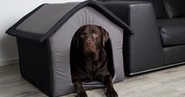 Stoff-Hundehütte / Hundehöhle, grau - L 60 x B 56 x H 60 cm - 2